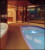 PARADISE SWIMMING POOL SUITE Bask in soothing comfort and elegant ambiance