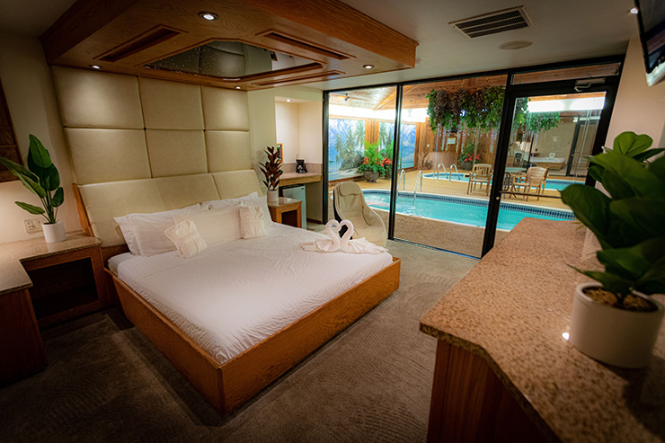 Sybaris Paradise Swimming Pool Suite - Downers Grove